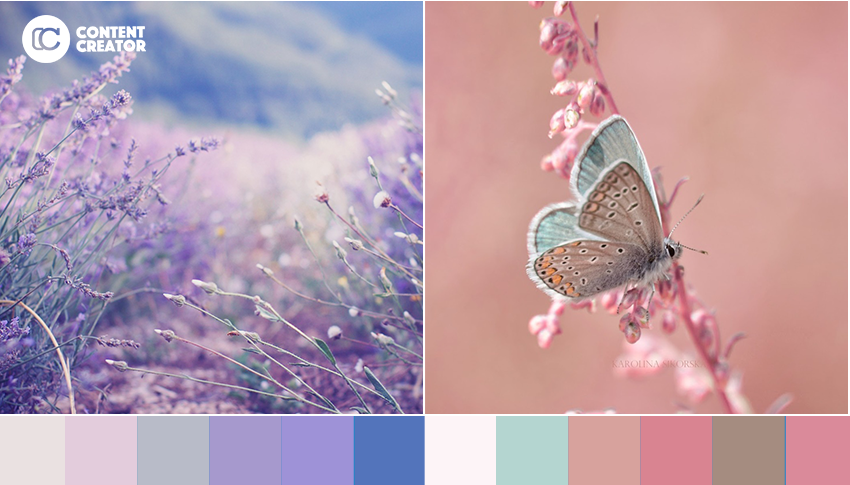 Picking A Color Palette 5 Beautiful Ideas For Your Next Social
